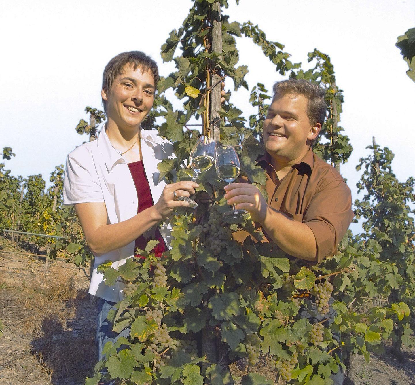 Weingut Koenen
